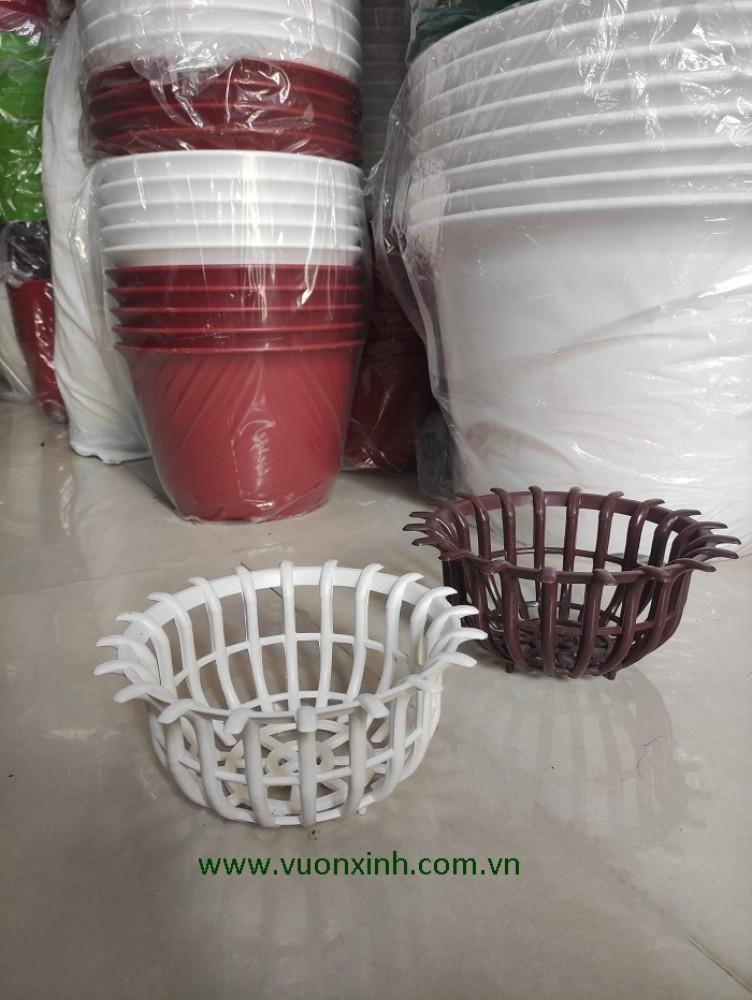Chậu Nhựa Hình Sen Phi 230