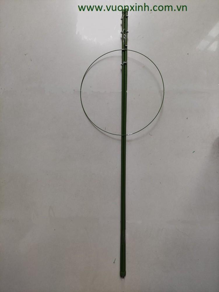 Gía đỡ Hoa Hồng, Cà chua..120cm