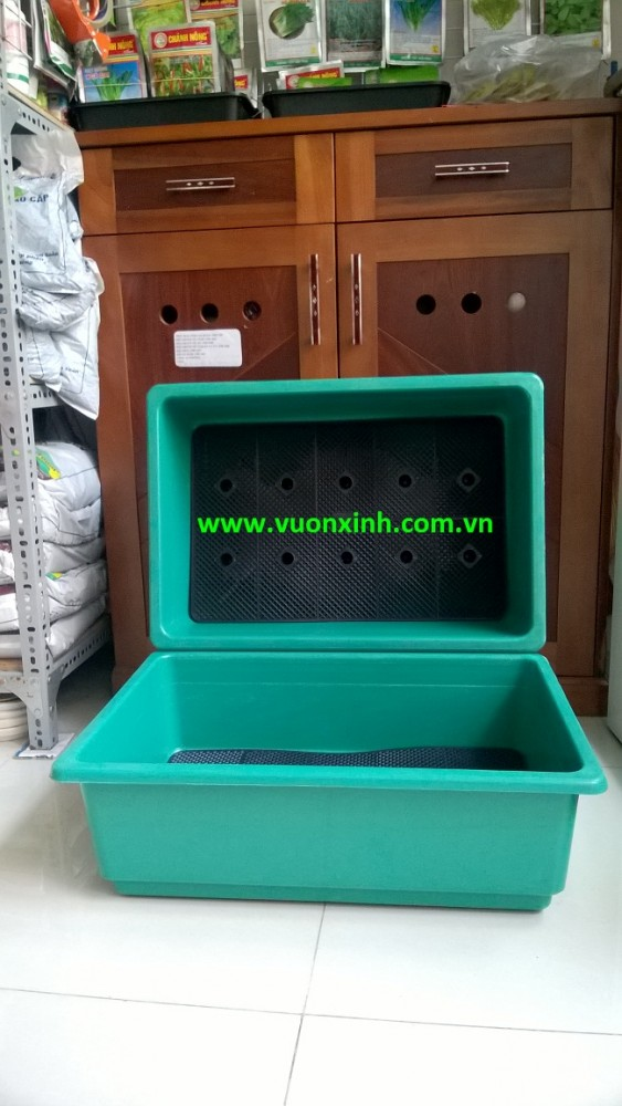 Khay nhựa trồng rau Xanh BL_65.45.21