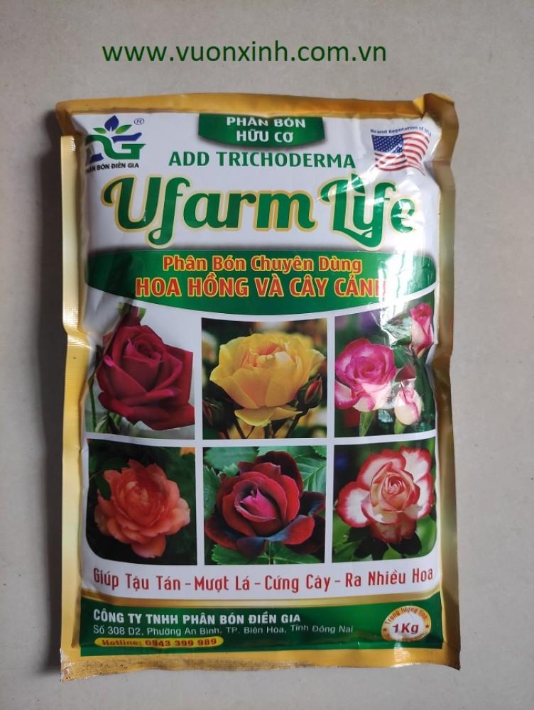 Phân bón chuyên Hồng UFARM LIFE